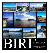 BIRI Pictures
